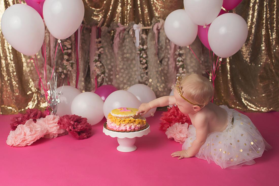 Keywords Brooklyn Park MN Kali Eden Photography Princeton Studio Balloons Birthday Girl Family First Milestone